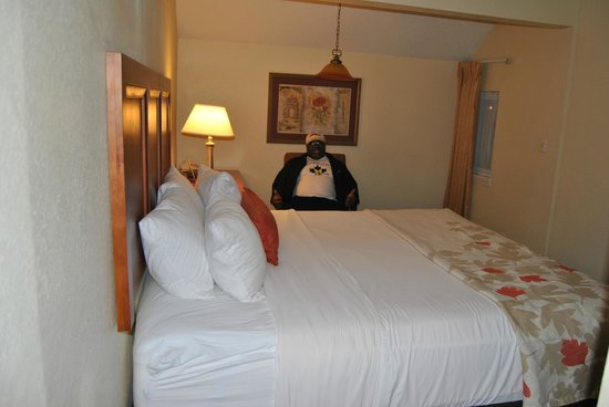 Hawthorn Suites by Wyndham Grand Rapids, MI: King bed on main level (husband not included)