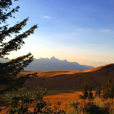 Wyoming Inn of Jackson Hole: We rode our bikes from the hotel to the Elk Refuge -- beautiful views!