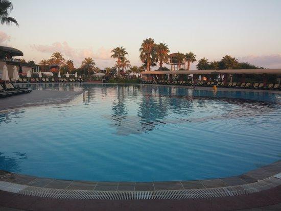 Maritim Pine Beach Resort: havuz