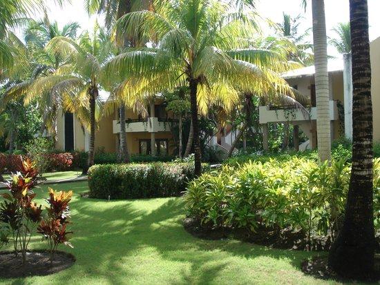 Bavaro Princess All Suites Resort, Spa & Casino: Jardim em frente aos quartos