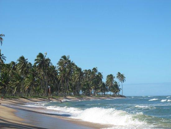 Forte Beach : A outra ponta da praia