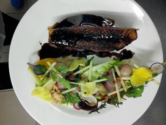 L'autruche : Filet de canette, jus vigneron, rave et radis cuits-crus.....