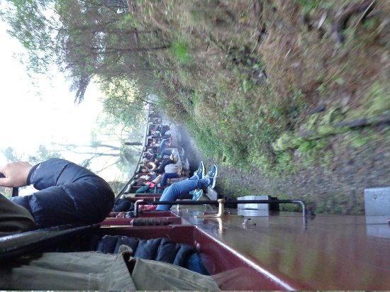 Puffing Billy Railway: Dangle your legs out!