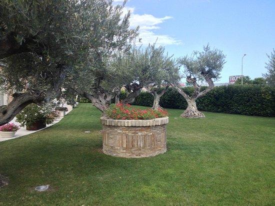 Hotel Villa Michelangelo: Giardino