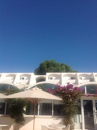 Club Med Djerba la Douce: Calyspo