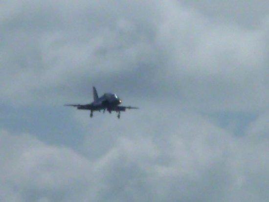 RNAS Culdrose Airfield Viewing Area: Hawk