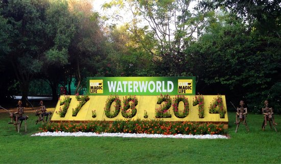 TUI MAGIC LIFE Waterworld: Everyday garden housekeepers adapt flower calendar