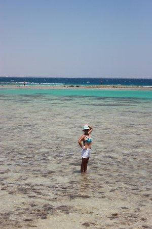 Coral Beach Resort : Отлив моря