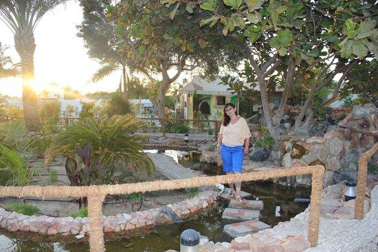 Coral Beach Hurghada Resort : Территория напротив ресепшен