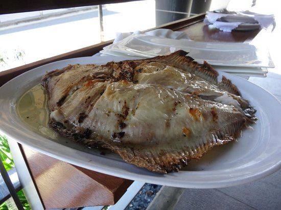 Restaurante Elkano: Whole grilled Turbot - delicious!
