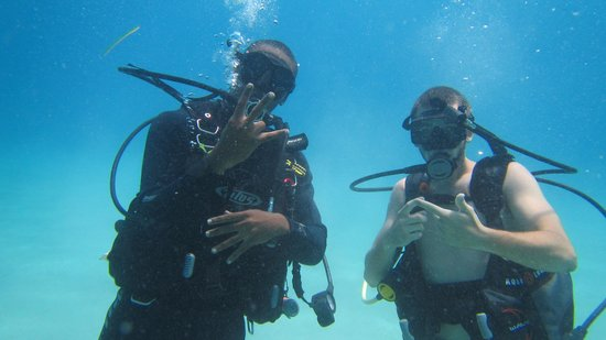 St. Thomas Diving Club: joshay and mike schonder