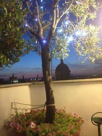 La Terrazza Dei Papi: l'albero di ulivo illuminato