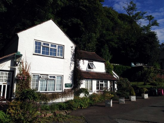 The Cottage in the Wood: The Beech Cottage