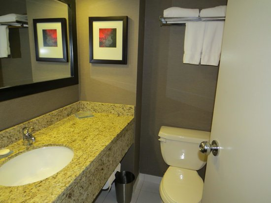 Radisson Hotel Vancouver Airport: bathroom