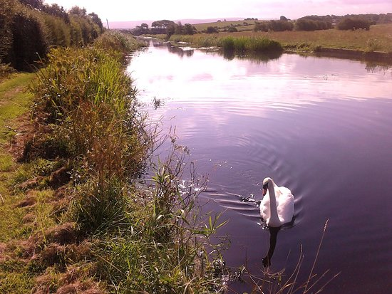 The Mill at Conder Green : canal walk