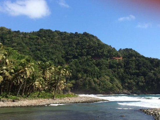 Rosalie Bay Resort: River that goes by the edge of property to the ocean