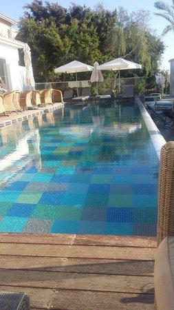 The King Jason Paphos: Elegencia Pool
