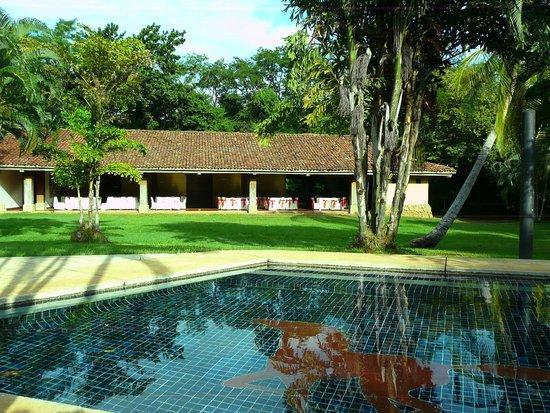 Hotel La Pacifica: Zona de la piscina, donde rondan los venados