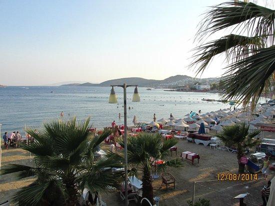 Hotel Sun Club: Şezlongları 18.00'da toplanmış otelin plajı