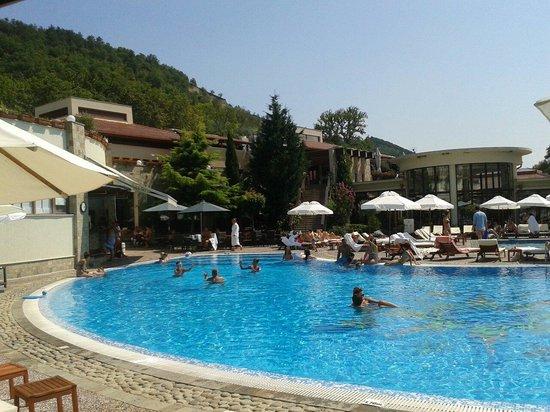 Pirin Park Hotel: Πισινα