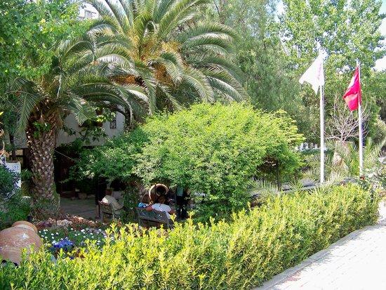 Nice spot to relax, Hotel Kalehan,  Selcuk, Turkey