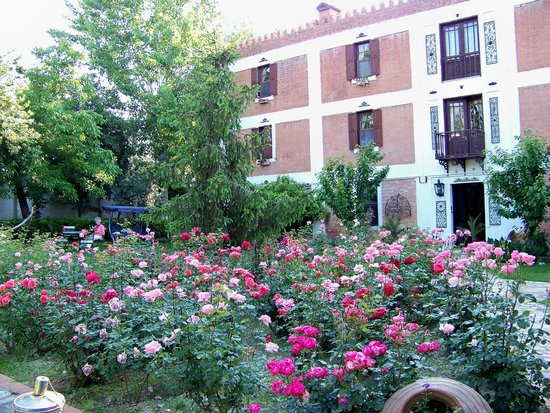 roses in courtyard in May, Hotel Kalehan, Selcuk, Turkey