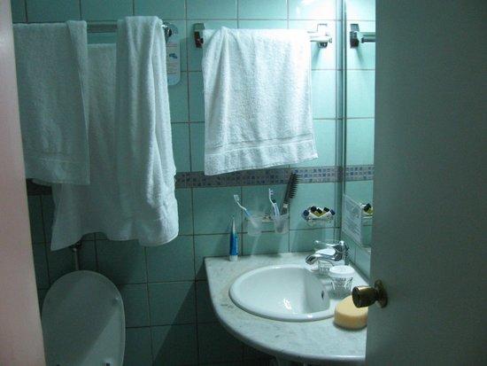 Stanley Hotel: can see mini sampoo and mini shower gel
