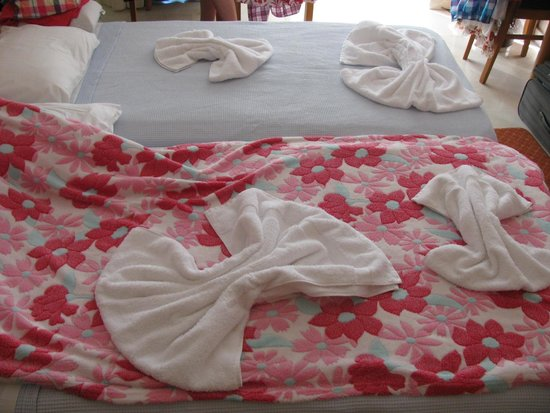 Stanley Hotel: beds with MY pink blanket