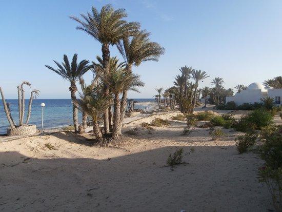 El Mouradi Djerba Menzel: vista dal terrazzo della camera