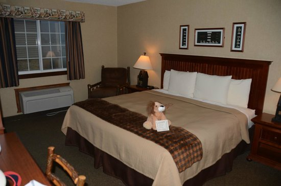 Stoney Creek Inn : lovely room