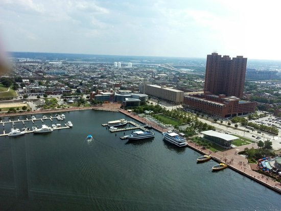 Royal Sonesta Harbor Court Baltimore : hotel view from top of trade center across harbor