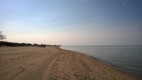 Hammonasset Beach State Park: Beach2