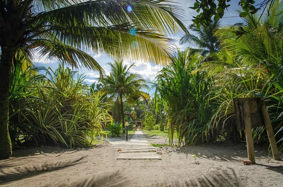 Turtle Beach Lodge: Path from beach to hotel