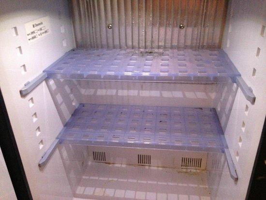BEST WESTERN Hotel Fenix : fridge