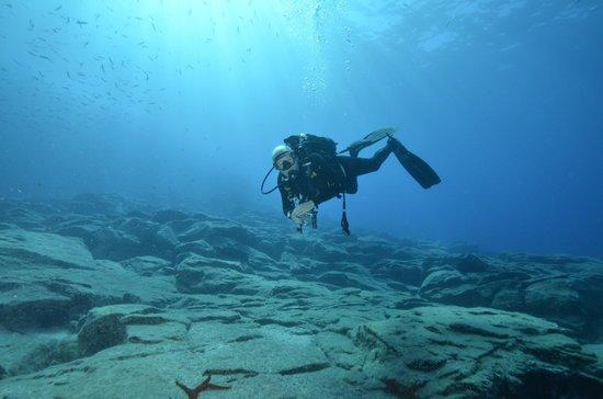 Heerlijk hangen tijdens 1 van de duiken met Blue Bottom Diving