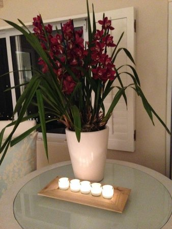 Atlantic Suites Camps Bay : Magnificent orchids in every room