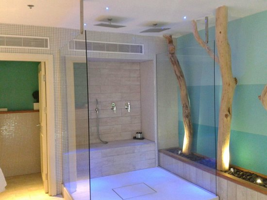 Herods Vitalis Spa Hotel Eilat: rain suite