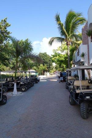 Ixchel Beach Hotel : Hidalgo Street