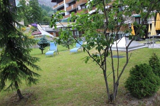 Hotel Antika: Garden