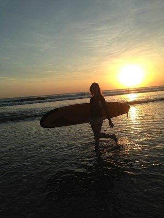 Endless Summer Kuta: Endless Summer Surf School