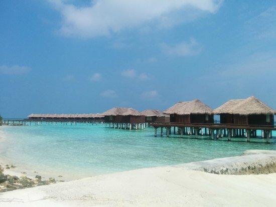 Sheraton Maldives Full Moon Resort & Spa: more Maldives postcard photos