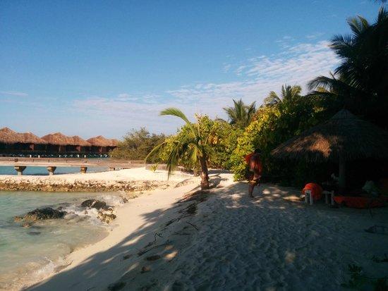 Sheraton Maldives Full Moon Resort & Spa: island photo
