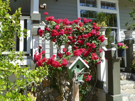 ForFriends Inn: Flowers on wraparound porch