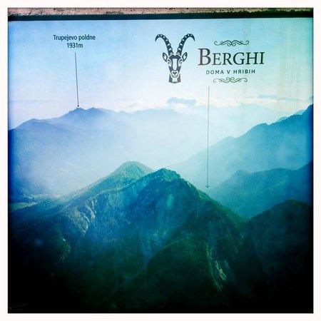 Apartment House Berghi: ...