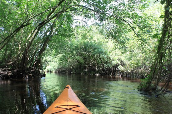 Canoe Outpost - Little Manatee River: Beautiful