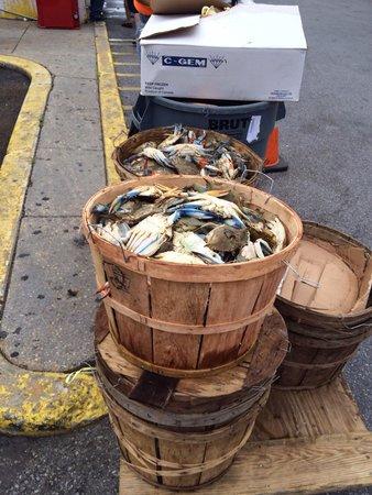 Maine Avenue Fish Market: Blue crab