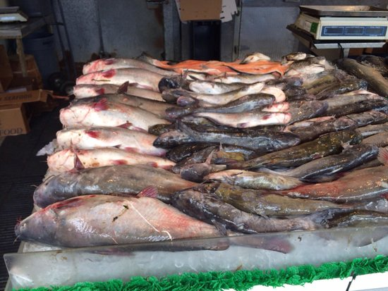 """Maine Avenue Fish Market: These dish were still """"gasping"""" on the ice!"""