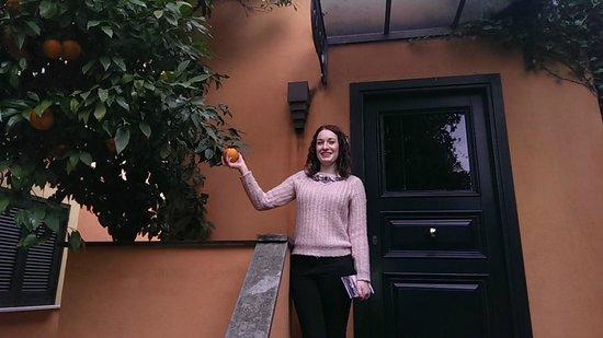 Hotel San Anselmo: orange tree outside room
