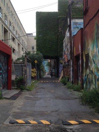 Tour Guys: Graffiti Alley