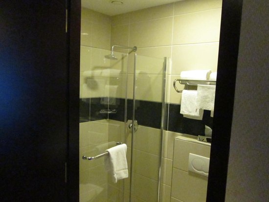BEST WESTERN Blue Square Hotel : Shower from doorway
